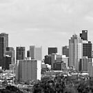 Melbourne CBD Skyline - Black and White by James Torrington