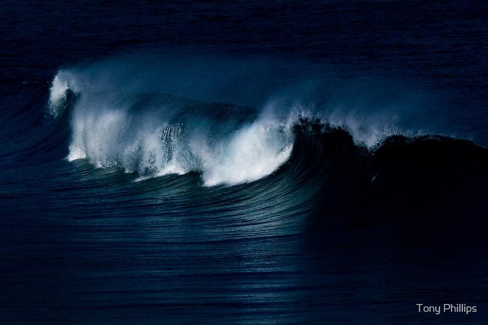 Wave Noir by Tony Phillips