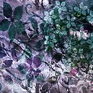 Colour & Colours. by Vitta