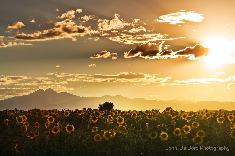 Sunset Of The Angels by John  De Bord Photography