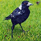 Friendly Magpie by Linda Callaghan