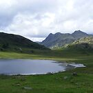 Blea Tarn - the light on the other side by monkeyferret