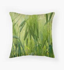 Views 5201 ♥ ♥ ♥ ♥ series . Green Green Grass Of Home. Tom Jones & Brown Sugar Story.  Throw Pillow