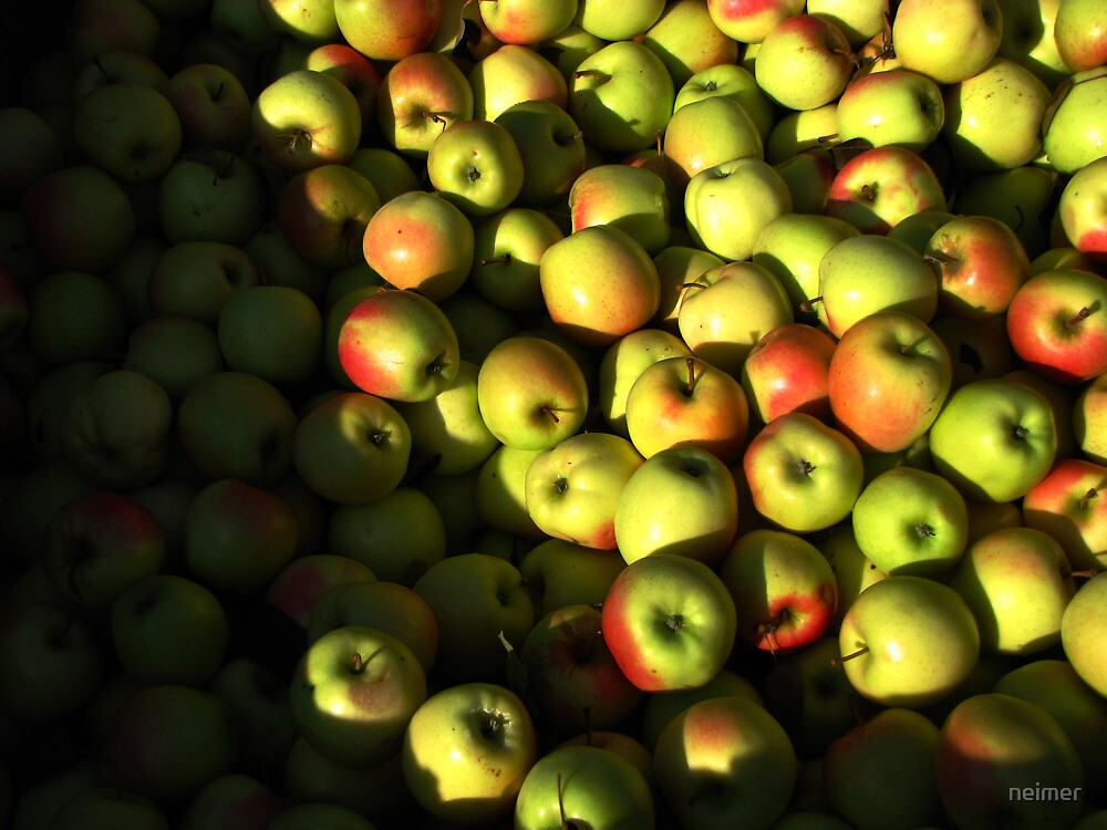 Red and yellow apples by neimer