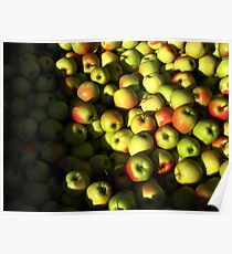 Red and yellow apples Poster