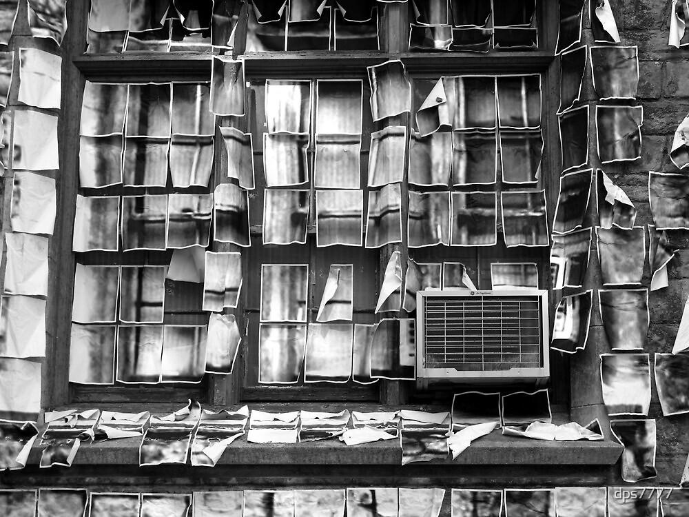 Window & Wall Paper by David Schroeder