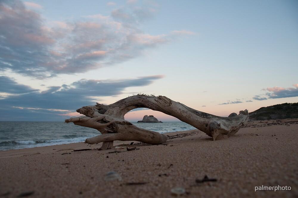 Remote Beach by palmerphoto