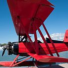 The Red Barron by palmerphoto