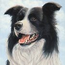 Border Collie Portrait by johnartist