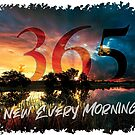 365-New Every Morning by ripplesoftime
