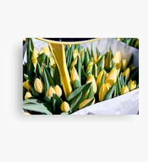Basket of Yellow Sunshine Canvas Print