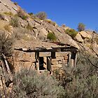 Miner's rock house by Tim Harper