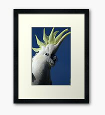 What the heck! Framed Print