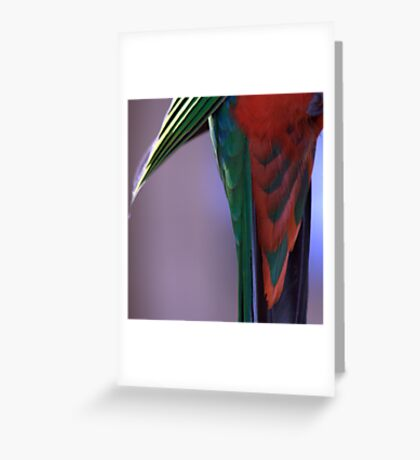 Shake your tail feathers! Greeting Card