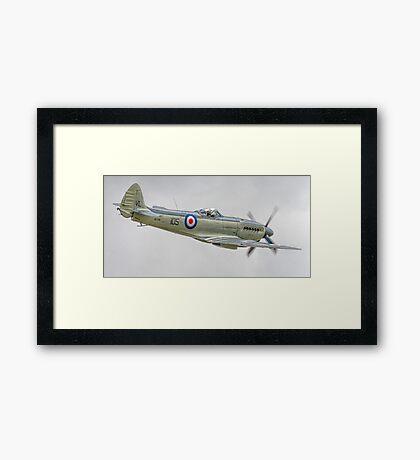 Supermarine Seafire MK.XVII (2) Framed Print