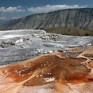 Mammoth Hot Springs by Daniel Owens
