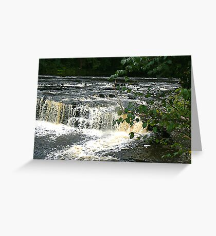 Aysgarth Falls - Yorks Dales. Greeting Card
