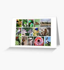 Aussie friends forever Postcard Greeting Card