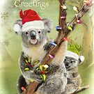 Christmas Koala's by Trudi's Images