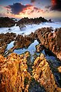 Rockpools and Quartzite by Garth Smith