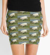Schafe auf der Insel Harris Minirock