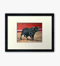 A load of old Bull. Framed Print