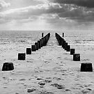 Converging Groynes by Graham Sessions