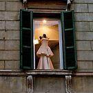 Night light in Verona by anisja
