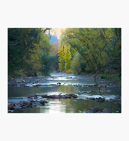 Very early morning at Bright in Victoria Photographic Print