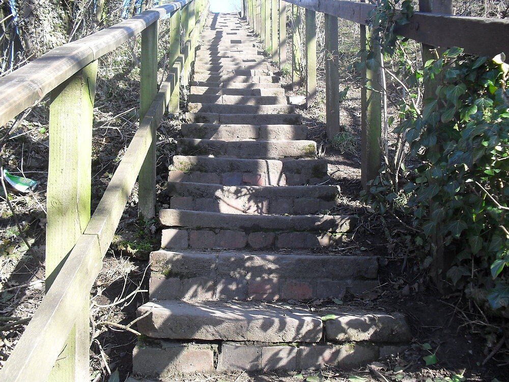 Dappled Sunlight on Steps by Fury Iowa-Jones