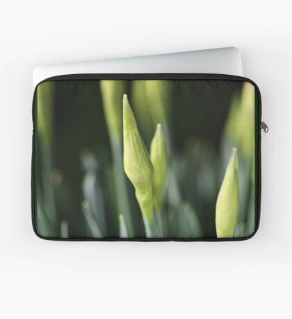 Daffodil Buds Laptop Sleeve