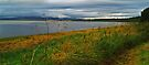 The Beauly Firth by WatscapePhoto