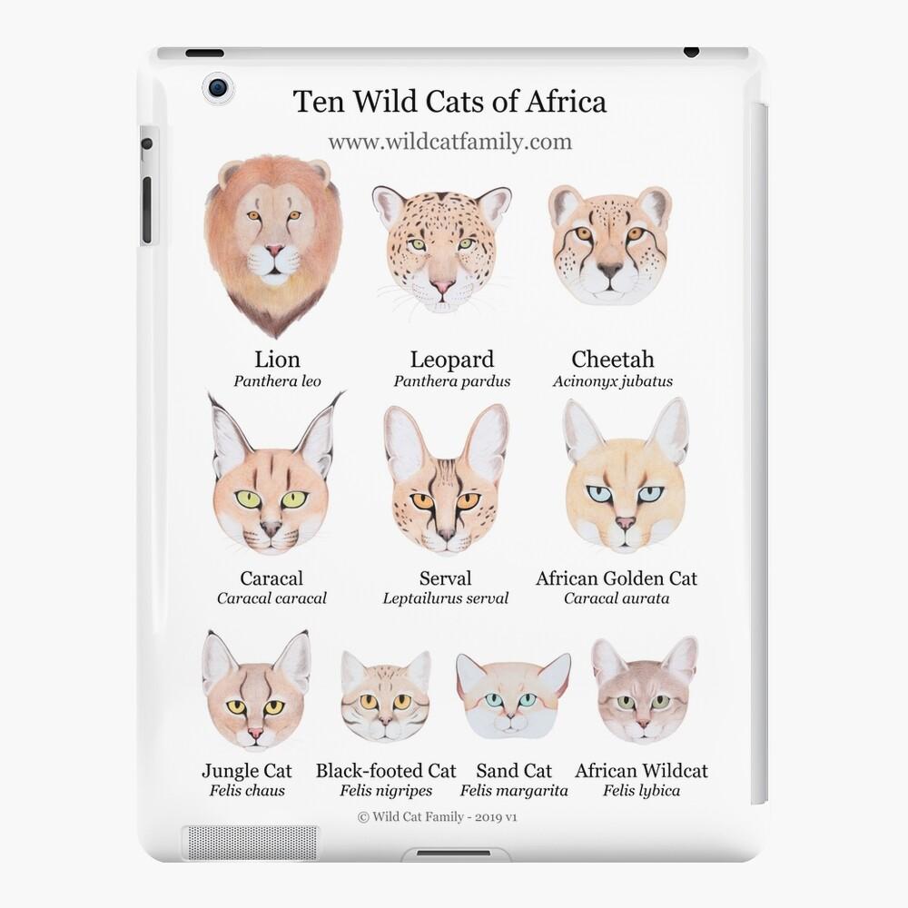 Ten Wild Cats of Africa Chart iPad Case & Skin