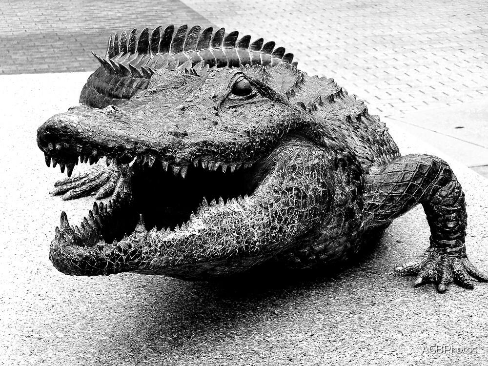 Gator Bait by ACBPhotos