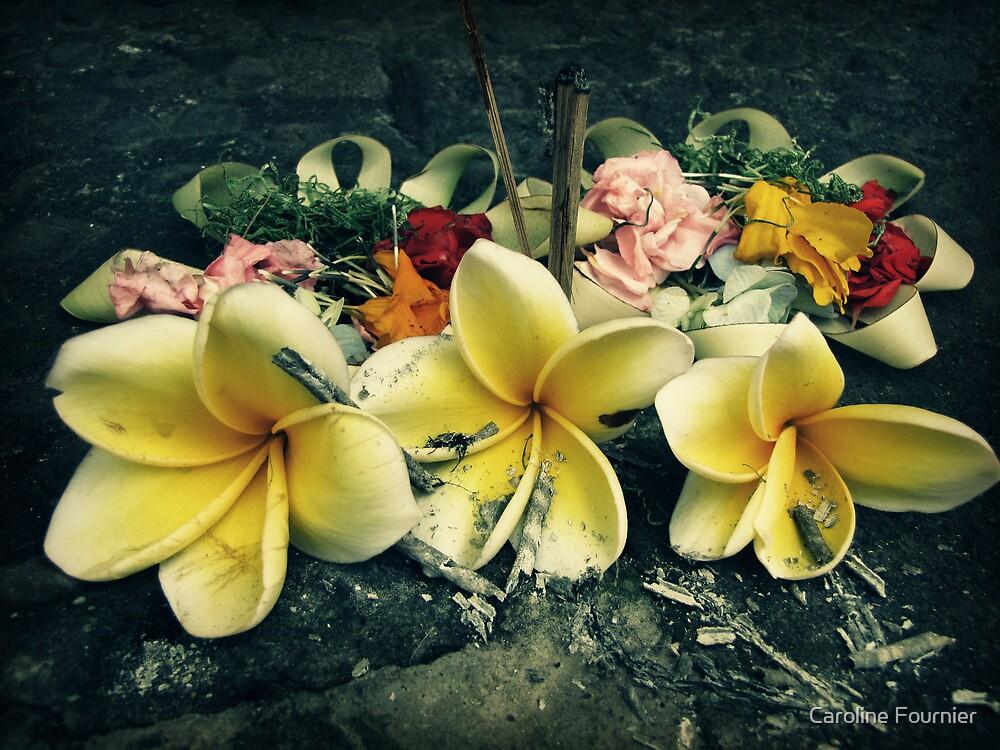 Offering by Caroline Fournier
