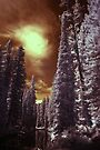 Infrared  by skreklow