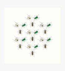 Tiger Beetle Pattern Art Print