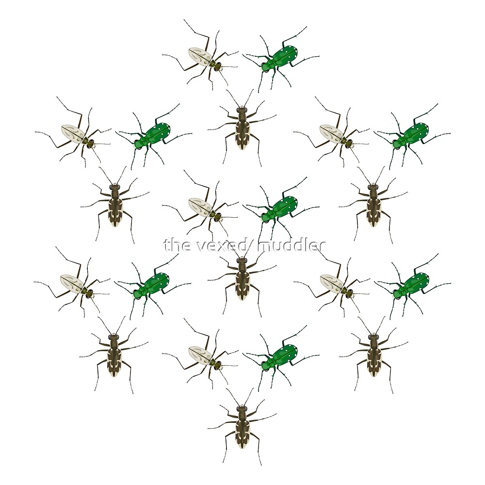 Tiger Beetle Pattern by the vexed  muddler