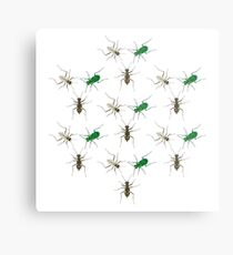 Tiger Beetle Pattern Metal Print