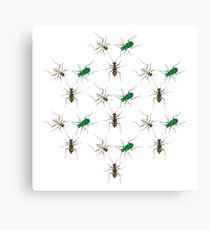 Tiger Beetle Pattern Canvas Print