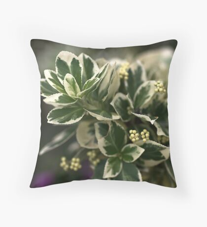 Variegated leaves Throw Pillow