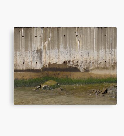 beautiful & disgusting Canvas Print