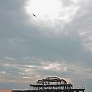 Old Brighton pier by fionapine