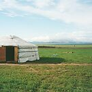 Mongolian Ger camp by fionapine