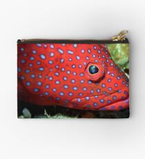 Blue spotted tamarin wrasse Studio Pouch
