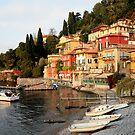 Ravenna, Lake Como - Italy by fionapine