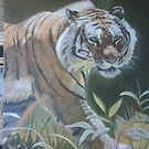 On the prowl ( finished ) by cherie  vize