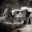 Kenilworth Castle, Warwickshire, UK [IR] by George Parapadakis (monocotylidono)