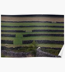 Dry Stone Walls in the Peak District Poster