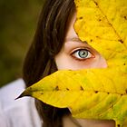 Fall eye by photodivaanna